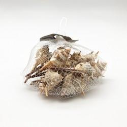 Malla de conchitas caracolas caribeñas