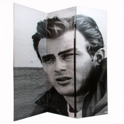 Biombo James Dean con dos caras distintas