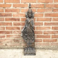Buda Thai meditando de pie