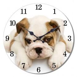 Reloj window cachorro Bulldog Inglés