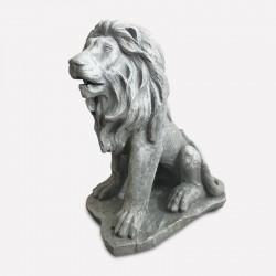 León asiático en color gris